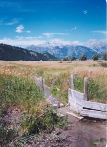 2002 Ditch gate