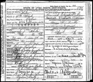 Death Certificate of Hannah Elizabeth Johnson