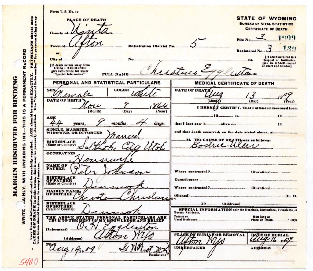 Death Certificate of Annie Christine Johnson Eggleston